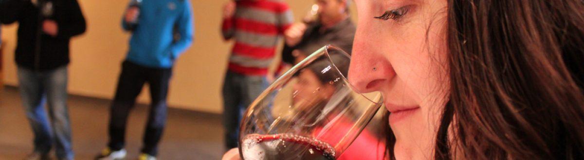 cata de vinos en la bodega viñas de vero
